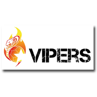 Bad Wildungen Vipers